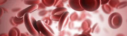 Наружные кровотечения