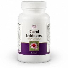 Korallis Ehinācija