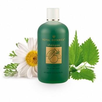 Citrusu – piparmētru šampūns
