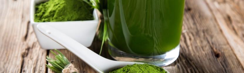 Хлорелла — Маленькое зеленое чудо